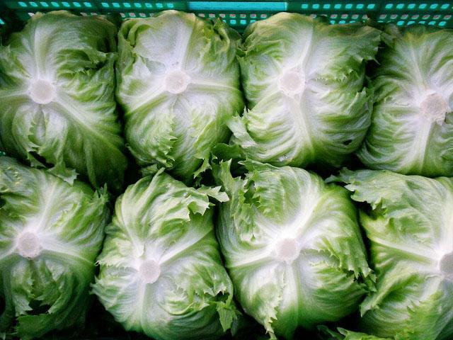 業務用契約野菜2